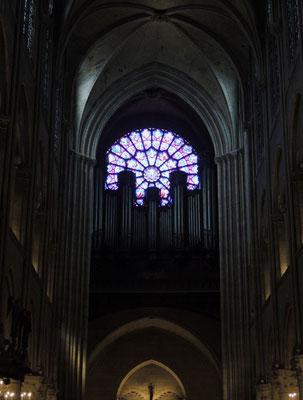 Il grande organo e il rosone occidentale