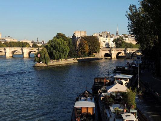 Vista del Pont Neuf