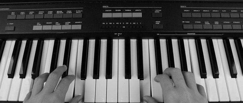 Nico Boden - Keyboard