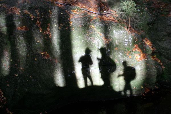 Martin Menzel - Blickwinkel Schattenwelt