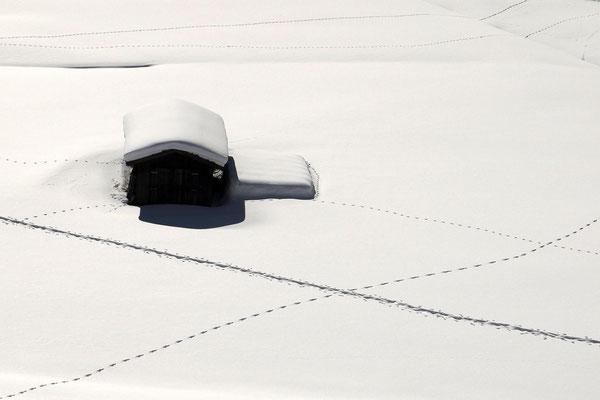 Lisa Scholz - Spuren im Schnee