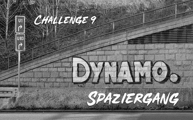 AG Foto-Challenge 9: Spaziergang (Foto: Rita Boden - DYNAMO)