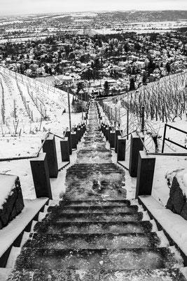 Alina Escher - Abwärts