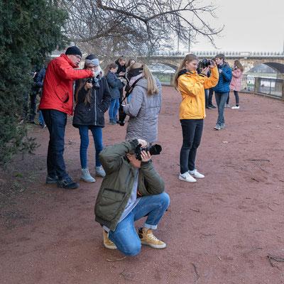 Fotografieren des Bodenschützes an der Albertbrücke - Foto: Rita Boden