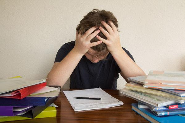 Fabian Berger (16 Jahre) - Hausaufgaben