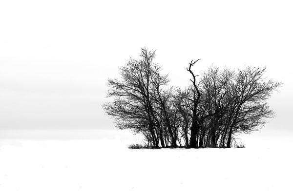 Felix Keil (14 Jahre) - Winterlandschaft
