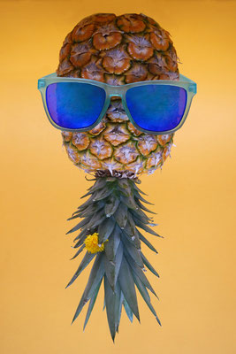 Rebecca Toews - Mr. Pineapple (Sparte Farbe)