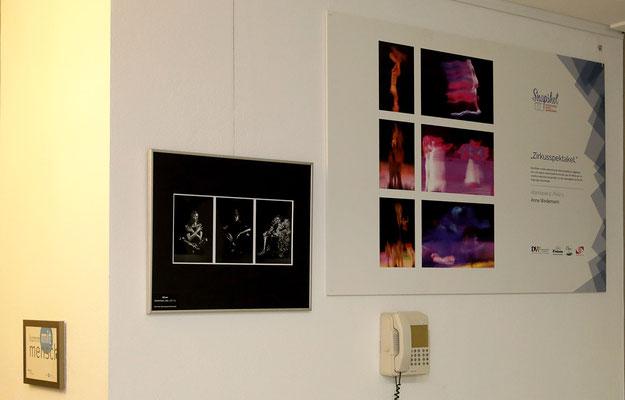 Große Fotoausstellung im Akademiehotel Dresden - Foto: Christian Scholz