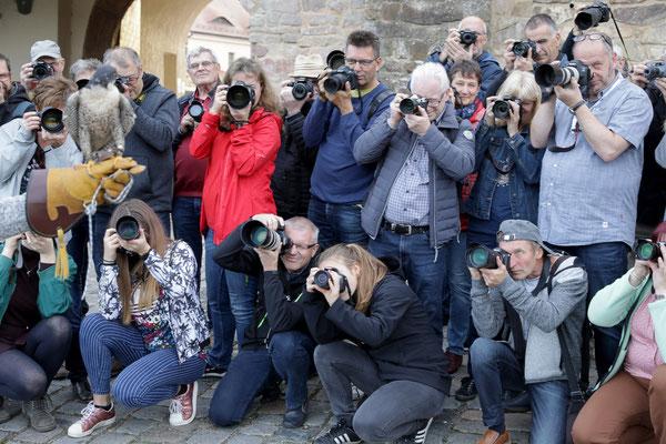 Fotografenansturm - Foto: Christian Scholz
