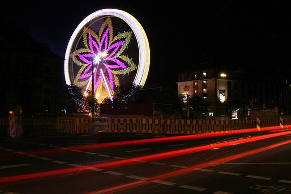 Linus Klauke - Lichterblume