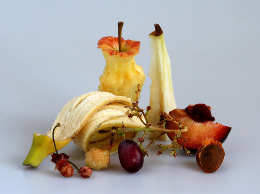 Lisa Scholz - Obst (Honorable Mention)