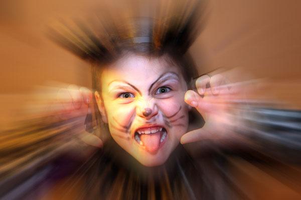 Lisa Scholz - Miau