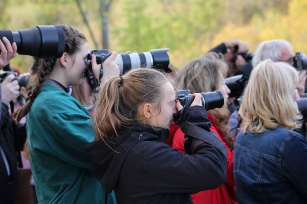 Immer die Kamera zur Hand - Foto: Lia Bertelmann