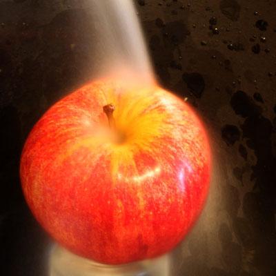 Lisa Scholz - Apfelwäsche