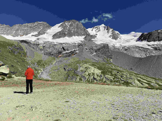 Gran Paradiso Bergführer