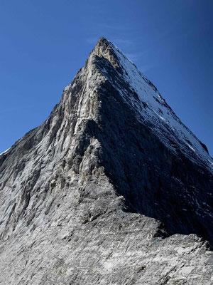 Eiger Mittellegigrat Bergführer