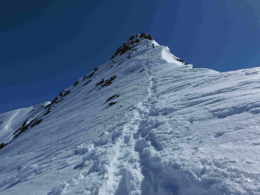 Bergführer Wildspitze