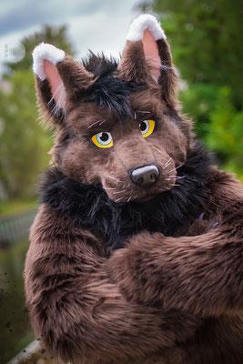 Wolfinden