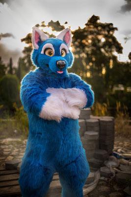 Blauerwolf