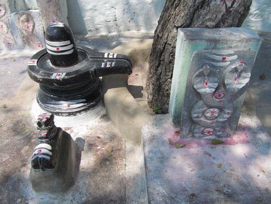 Shiva's in da house.