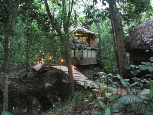 Unser kleines El Panchan - mitten im Dschungel.