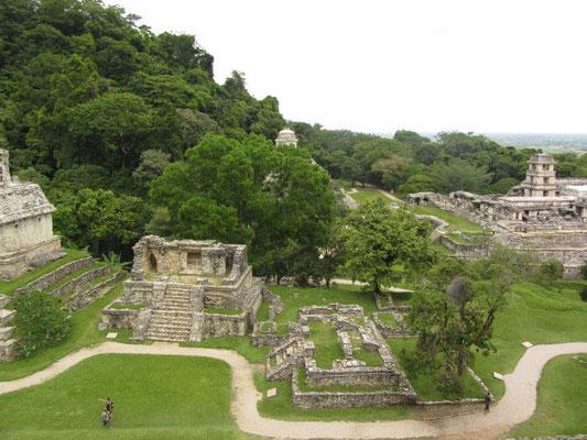 Tempel der Kreuzgruppe, ein Teil des Tempels der Inschriften & der Palast. WoW!