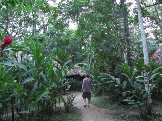 Unser Garten war der Dschungel.
