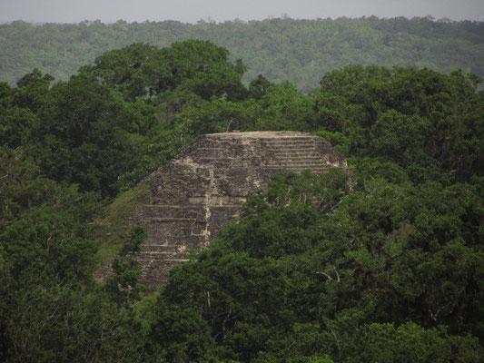 ! (Blick von Templo IV)