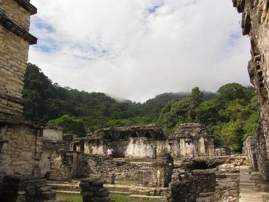 Auf einer Fläche von 100 mal 80 Metern erhebt sich der größte architektonische Komplex von ganz Palenque: der Palast.