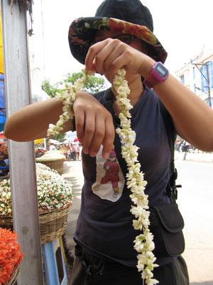 Eine frische Jasminblütenkette. Chihi versucht ihr neuestes Geschenk am Arm zu installieren.