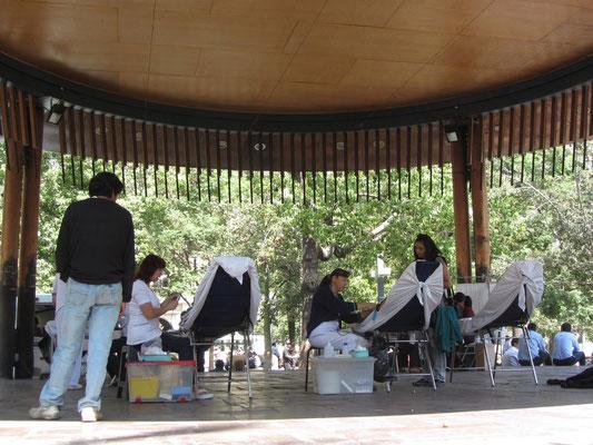 Schönheitssalon mitten im Park.