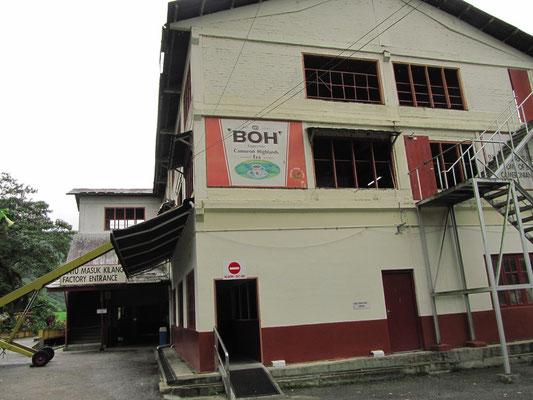 Die BOH-Tee-Produktionsstätte.