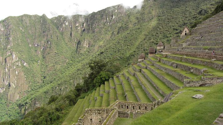 Mehr Terrassen heißt mehr Anbaufläche. (Östliches Landwirtschaftsareal)