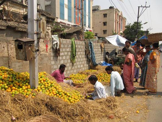 Orangensortierer/-verkäufer.