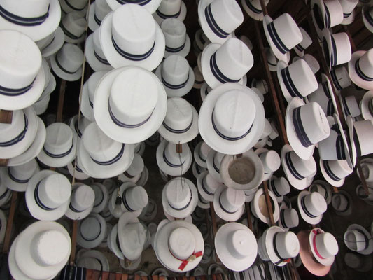Panamahüte in Ecuador? Ganz richtig der Panamahut kommt tatsächlich aus Ecuador und nicht aus Panama.