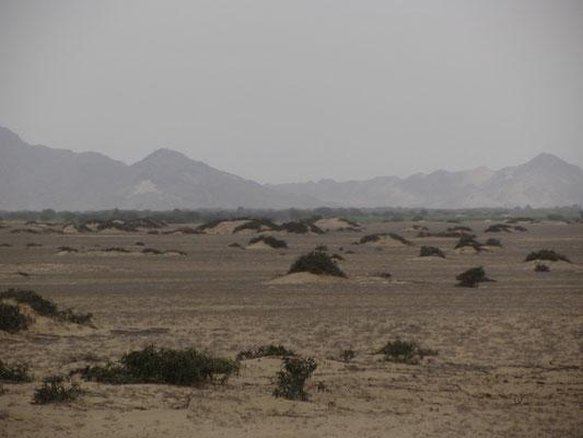 Überall so viel Sand und Steine.