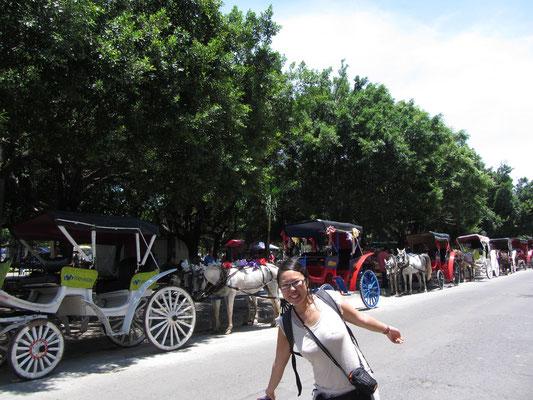 Pferdekutschen am Parque Central.