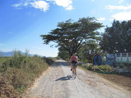 Tour de Nyaung Shwe & umliegende Dörfer.