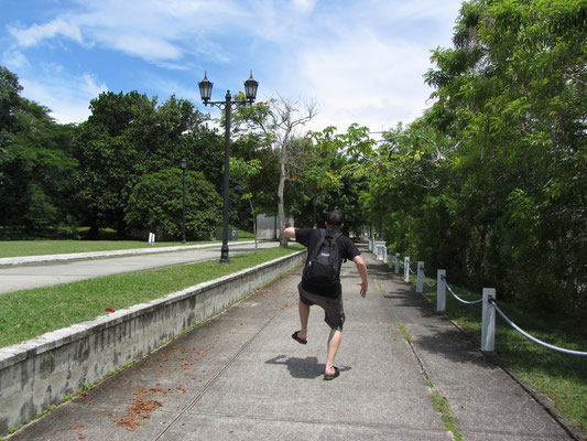 Auf dem Weg zu Größerem im Schritte eines Affen. (Causeway)