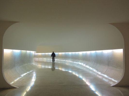 """""""Die Architektur besteht aus Traum, Phantasie, Kurven und leeren Räumen.""""  – Oscar Niemeyer"""