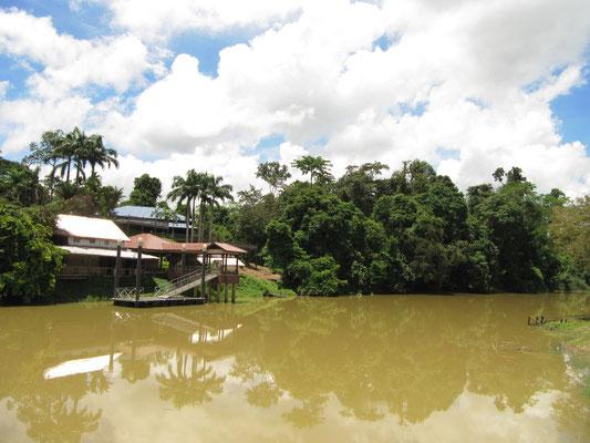 Niah National Park.