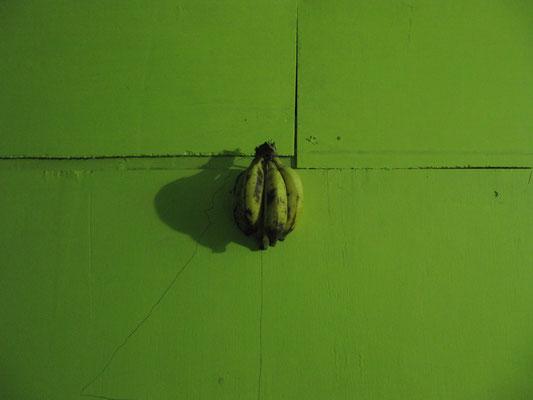 """""""Bananen an Wand"""" (Innenwand unseres Stelzenhauses)."""
