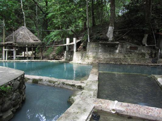 In diesen, eher kühlen Becken, waren wir die Einzigen. Und das bei dieser Dschungelkulisse.