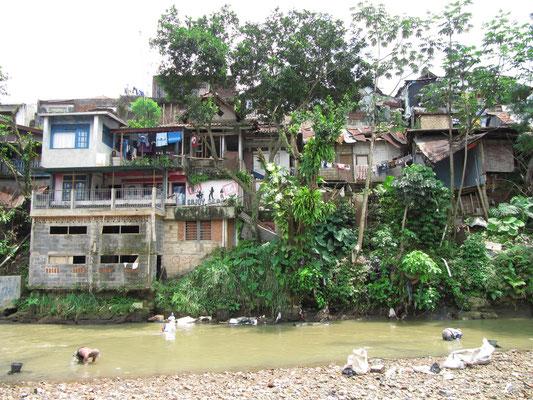 Leben am Fluss.