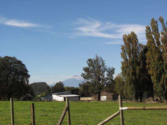 Auf dem Weg von unserem Zuhause zur weitentfernten Bushaltestelle. Der Vulkan Osorno stets im Hintergrund.