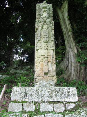 """Stele E auf der Westseite des Großen Platzes gehört zu den ältesten Stelen des Komplexes. Der Großteil der Stelen stammt aus der Zeit des Königs """"Rauch-Jaguar Imix-Ungeheuer"""", dem Großvater von """"18 Kaninchen""""."""