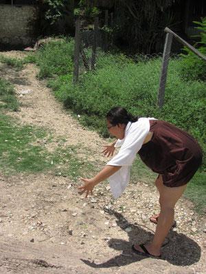 Chihi beim Schmetterlingfangen. So viele Schmetterlinge wie hier, haben wir vorher noch nie gesehen.