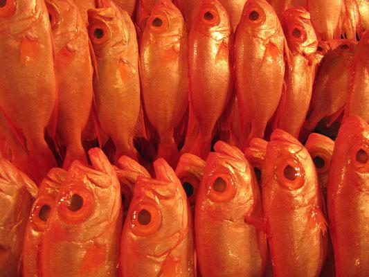 Frischer Fisch. (Nachtmarkt)