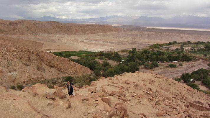 Auf einem Hügel über der Oase Quitor liegen die Ruinen einer Festung (Pukará) der Inkas.