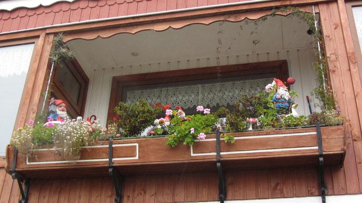 Gartenzwergkultur in Frutillar.
